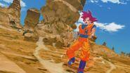 Son Gokū Super Saiyanin God (15)