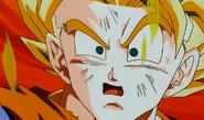 Goku 13