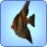 AngelfishTS3.png