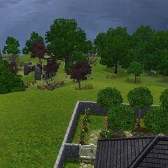 Widok na cmentarz