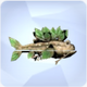 Treefish.png