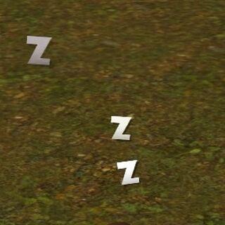 Śpiący szop