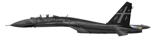 File:Flanker resized01.png