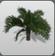 Palm Short 2 icon
