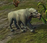 Umbrawolf1
