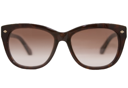 File:Planet 51 Sunglasses Female.PNG