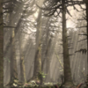 CretaceousChineseForestPortrait