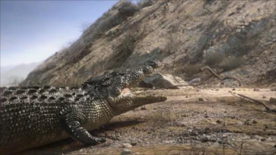 File:Crocodile3.png