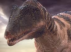 File:Carcharadontasaurus.png