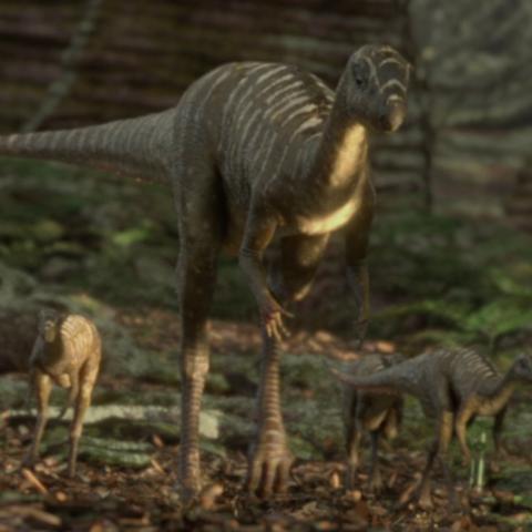 File:JeholosaurusPortrait.png
