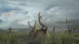 1x6 HatzegopteryxFlock