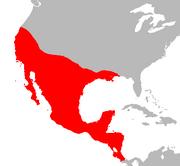 Chi Con Map