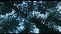 Thumbnail for version as of 18:48, May 8, 2014