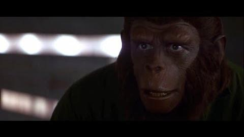 Conquest of the Planet of the Apes (1972) How the apes will gain freedom part 2
