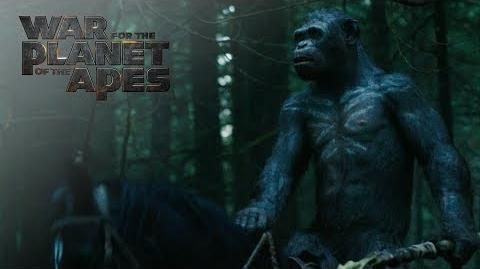 """War for the Planet of the Apes """"All Hail Caesar!"""" TV Commercial 20th Century FOX"""