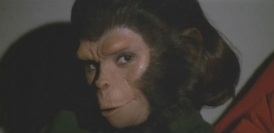 File:Breeding Chimp2.jpg