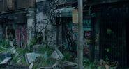 Dawn Graffiti