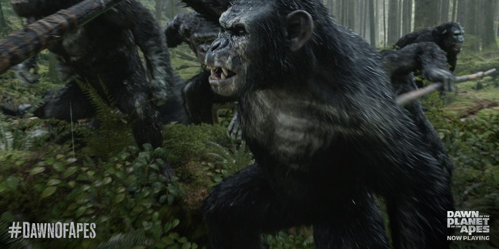 Image - Koba and apes hunt deer.jpeg | Planet of the Apes ...