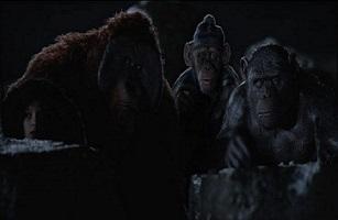 File:Bad ape.jpg