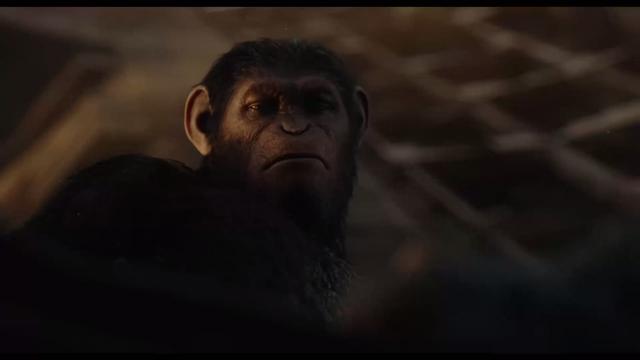 File:Caesar looks down on Koba.png