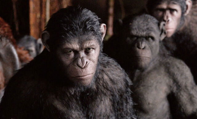 File:Dawn-of-the-planet-of-the-apes-ew-1.jpg