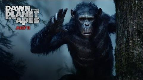 "Dawn of the Planet of the Apes ""Prepare"" TV Spot HD 20th Century Fox"