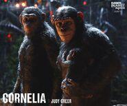 Cornelia & Caesar