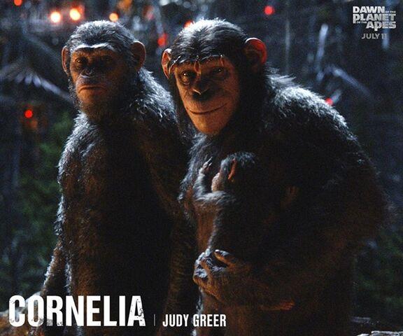 File:Cornelia & Caesar.jpg