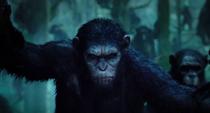 Dawn-of-Apes