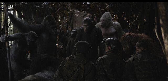 File:WPOTA Spear, Luca, Caesar, Winter & Maruice with soldiers, Preacher & Donkey.jpeg