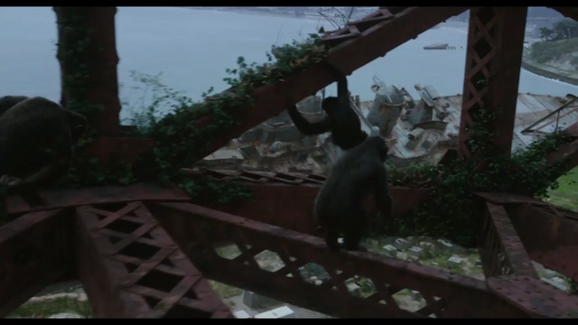 File:Apes travel through Golden Gate Bridge.png