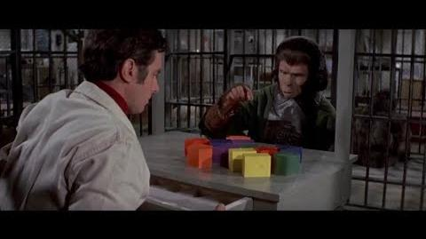 Escape from the Planet of the Apes (1971) Intelligence test part 2 7