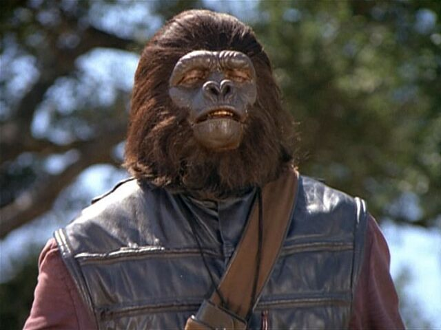 File:Signal operator gorilla.jpg