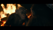 WPOTA Bad Ape tells Caesar the zoo Apes are dead