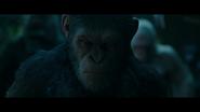 WPOTA Caesar's Rage