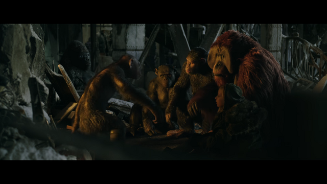 File:WPOTA Bad Ape, Caesar, Maurice, Rocket, Luca & Nova.png