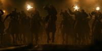 Human-Ape War