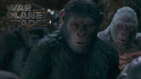 """War for the Planet of the Apes """"Winner Takes All"""" TV Commercial 20th Century FOX"""
