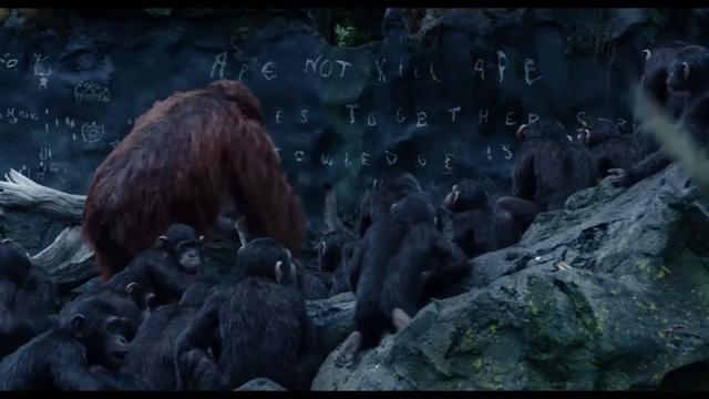File:Ape not kill Ape.png