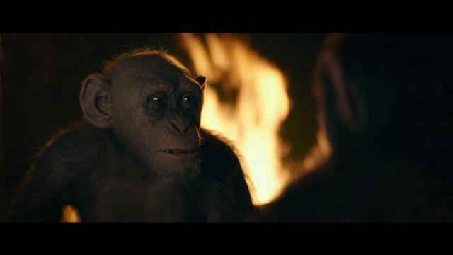 File:WPOTA Bad Ape 7.png