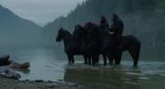 Horses (CE)