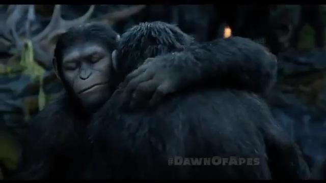 File:Caesar hugs Koba.jpg