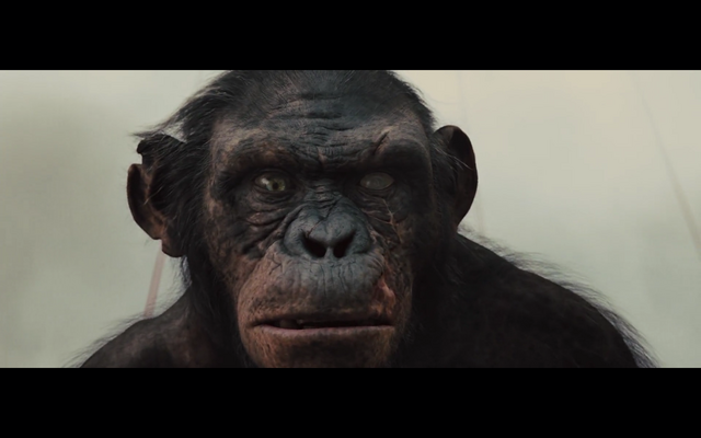 Image - Koba.png | Planet of the Apes Wiki | FANDOM ...