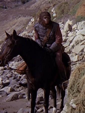 File:Mounted patrol.jpg