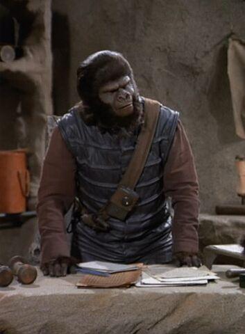 File:Gorilla trooper.jpg