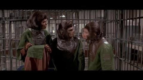Escape from the Planet of the Apes (1971) Intelligence test part 6 7