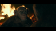WPOTA Bad Ape tells Caesar he's been running to survive