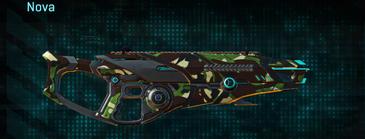 African forest shotgun nova