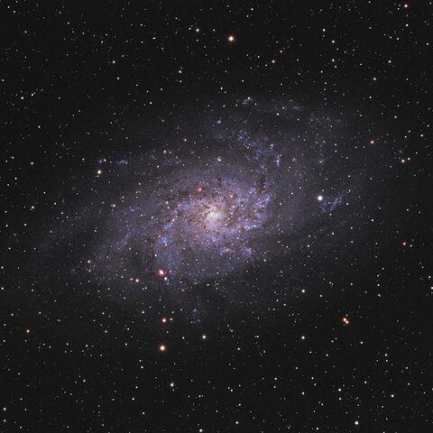File:Triangulum Galaxy.jpg