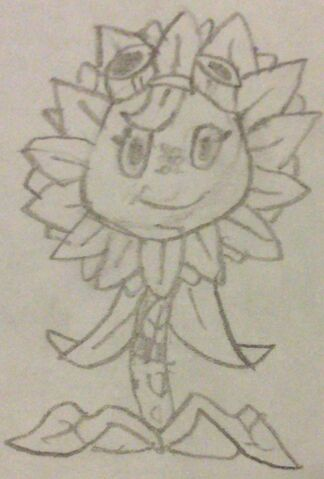 File:Solar Flare Sketch.jpeg